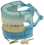 Full Arch Trays - Artimax Dental Articulators